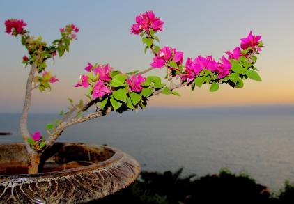 The Hashemite Kingdom of Jordan Photography By Charlotte Farhan The Dead Sea