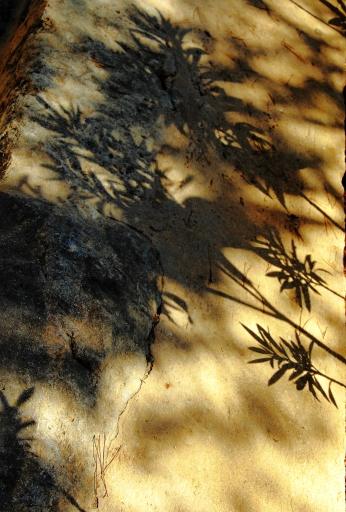 The Hashemite Kingdom of Jordan Photography By Charlotte Farhan Mount Nebo
