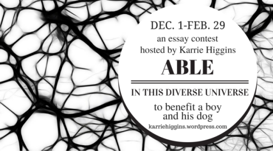 Able in This Diverse Universe Essay Competition
