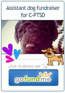 Assistant dog fundraiser for C-PTSD